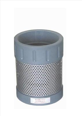 100mm PVC Foot Valve with 4in BSP Female Thread