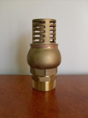 Onga Bronze Footvalve 1-1/2